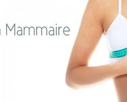 Réduction Mammaire marseille